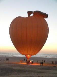 Apple N°13 Performance Tanger
